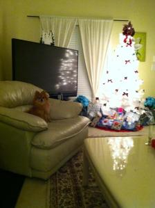 """Queen"" Delilah enjoying the freshly decorated Christmas living room"